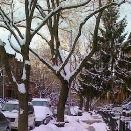 Brooklyn in the Winter